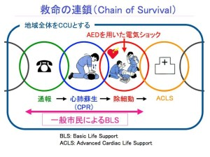 救命の連鎖(Chain of Survival)